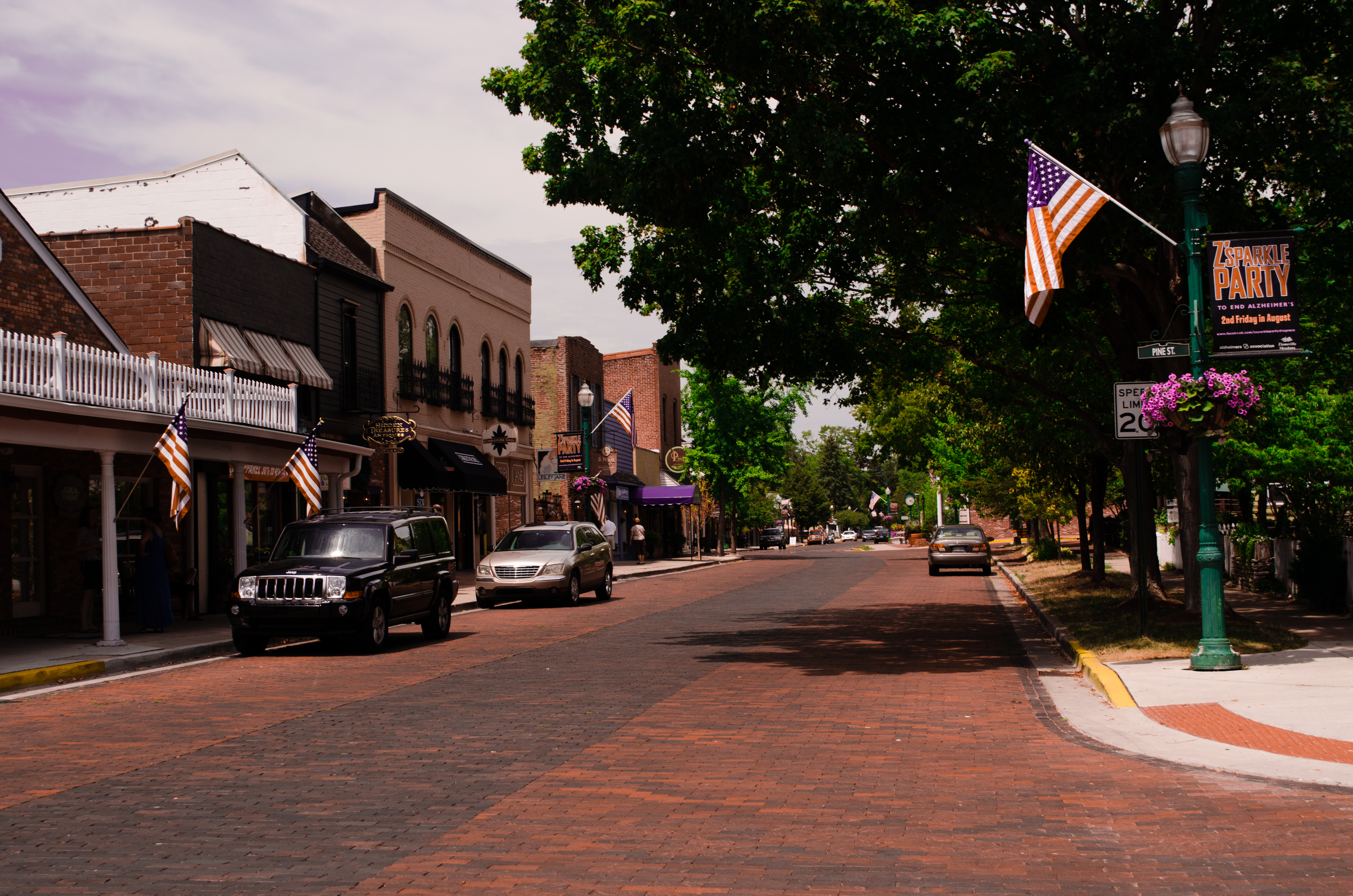 downtown zionsville indiana