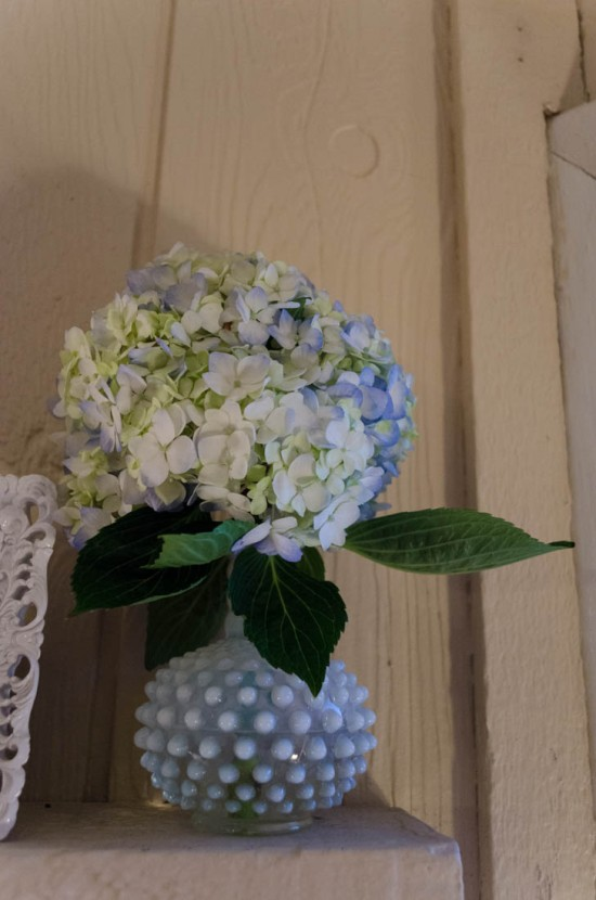 hydrangea in antique vase