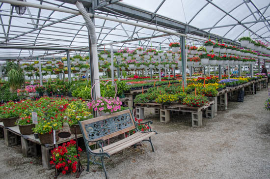 wells greenhouse greenfield indiana