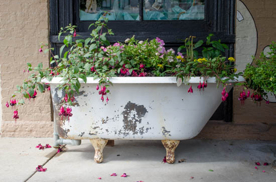 Clawfoot Bathtub Flowerbed