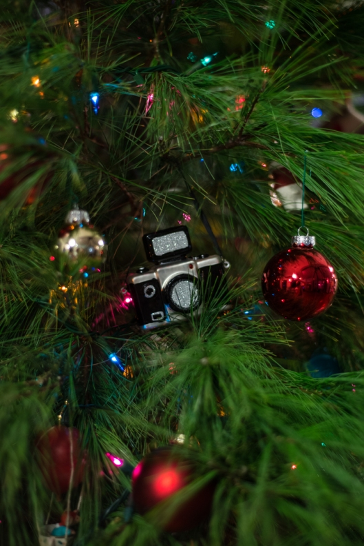 Camera Christmas Ornament